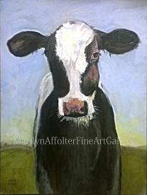 cow-003