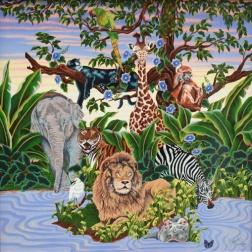 animal kingdom 30 x 30
