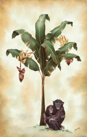 monkeys and bananas 22 x 14