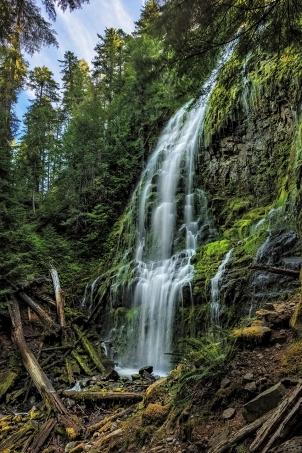 Summer at Proxy Falls, Oregon-001